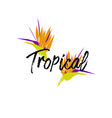 tropical cartoon jungle vector image