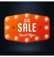 banner with text Big Sale billboard in retro style vector image