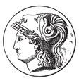 minerva head vintage vector image vector image