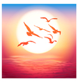 birds at sunset vector image