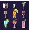 Alcohol Coctails and Other Drinks vector image