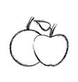apple and orange fruit nutrition diet vitamins vector image vector image