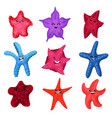 colourful starfishes set underwater invertebrate vector image