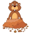 Cute groundhog cartoon vector image vector image