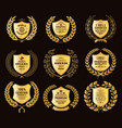luxury golden badges laurel wreath collection vector image vector image
