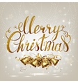 merry christmas inscription on light vector image vector image