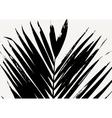 Palm Leaf Poster Design vector image vector image