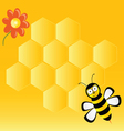 cute bee with honeycombs vector image