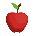 apple fresh isoloated icon vector image