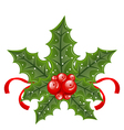 Christmas holly berry branches and ribbon isolated vector image