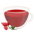 delicious natural tea with hawthorn in a beautiful vector image vector image
