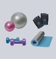 fitness equipment realistic gym accessories vector image