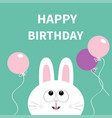 happy birthday white bunny rabbit face pet vector image