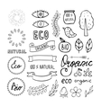 modern hand drawn elements design organic vector image vector image