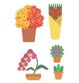 Variety of colorful flowers vector image