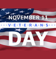 veterans day banner with us flag vector image vector image