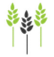 wheat ears halftone icon vector image vector image
