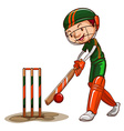 A male cricket player vector image vector image