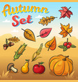 autumn set with autumn leaves vegetables vector image