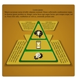 business pyramid vector image vector image