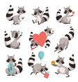 cute raccoon set funny animal cartoon character vector image vector image
