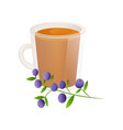delicious natural tea with blueberries in a vector image