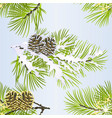 seamless texture christmas pine tree with cone vector image vector image
