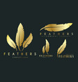 set of gold logos with feathers for writers or vector image