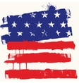 USA paint flag vector image vector image