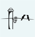 Bird on electrical wires vector image
