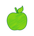 apple sign lemon scribble vector image vector image