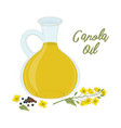 canola oil isolated on white vector image vector image