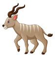 cartoon kudu antelope vector image vector image
