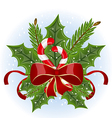 Christmas holly berry branches and bow isolated vector image vector image