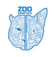 a half a tiger or bear head with half a cat vector image