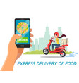 cartoon delivery girl scooter hand phone vector image