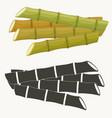sugar cane set cane plant sugarcane harvest vector image vector image