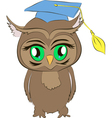 academic owl cartoon vector image vector image