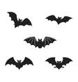 bat icon template design vector image vector image