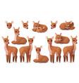 cartoon animal clip art vector image