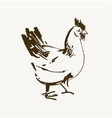 chicken breeding hand drawn set engraved vector image vector image
