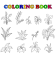 coloring book of set tropical plant vector image vector image