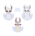 lama glama cartoon set for your design vector image