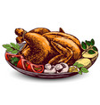 roasted turkey chickenwith ingredients hand vector image