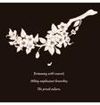 Sakura cherry on black background vector image vector image