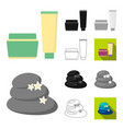 spa salon and equipment cartoonblackflat vector image vector image