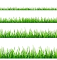 Grass seamless field pattern isolated on white vector image