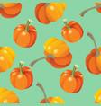 orange pumpkins seamless pattern vector image