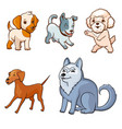 cartoon style dogs set vector image