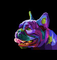 colorful pug head dog on geometric pop art style vector image vector image
